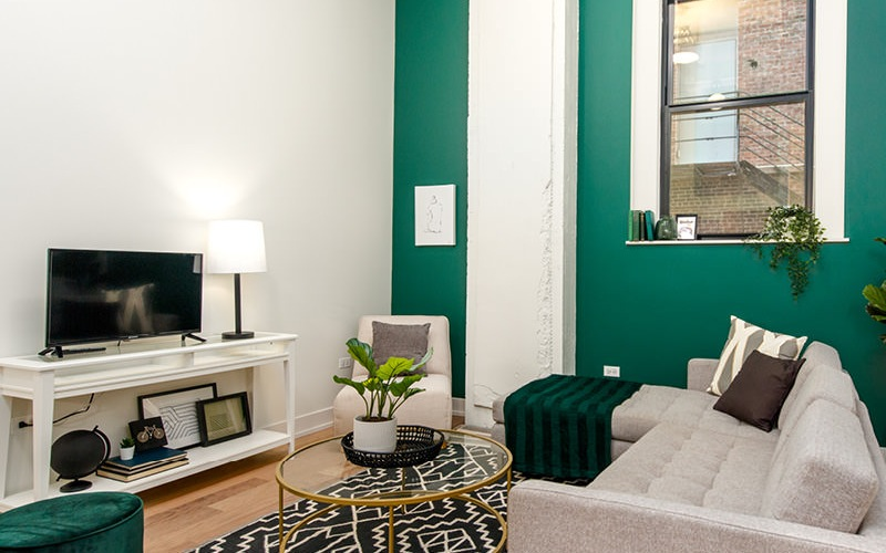 green accent walls in brightly lit living room