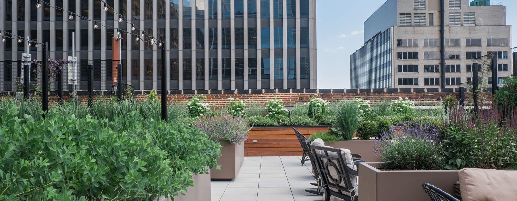 planters filled with various flowers decorate rooftop terrace